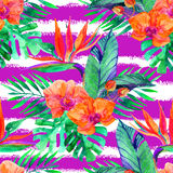 Tropical leaves and flowers. Floral design background. Stock Image