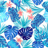 Tropical leaves and flowers of palm tree. Seamless pattern. Seamless pattern of leaves monstera. Tropical leaves of palm tree. Vector background Royalty Free Stock Photo