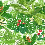 Tropical  Leaves and Flowers Pattern. Seamless pattern made with tropical leaves and flowers on white background. Bunches of green exotic plants and palm fronds Royalty Free Stock Image