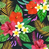 Tropical leaves and flowers seamless pattern colorful isolated h Stock Images
