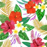 Tropical leaves and flowers seamless pattern colorful isolated h Royalty Free Stock Photo