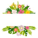 Tropical leaves and flowers Royalty Free Stock Photography