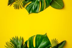 Tropical leaves and flowers on yellow background stock image
