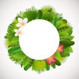 Tropical leaves frame. Floral jungle design background. Palm, banana, frangipany, monstera, strelitzia leaves Stock Photo