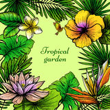 Tropical Leaves Frame Royalty Free Stock Images