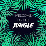 Tropical leaves frame. Jungle border. Palm leaves Royalty Free Stock Photo