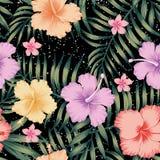 Tropical leaves hibiscus frangipani seamless black background vector illustration