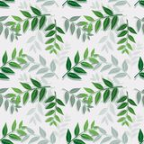Tropical leaves isolate on white background,Seamless repeat pattern for textile,fabric,cover,print or wrapping paper vector illustration