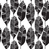 Tropical leaves, jungle pattern. Seamless, detailed, botanical pattern. Vector background. Tropical leaves, jungle pattern. Seamless, detailed botanical pattern Royalty Free Stock Photos