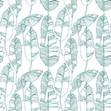 Tropical leaves, jungle pattern. Seamless, detailed, botanical pattern. Vector background. Royalty Free Stock Photos