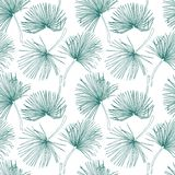 Tropical leaves, jungle pattern. Seamless, detailed, botanical pattern. Vector background. Palm leaves. Tropical leaves, jungle pattern. Seamless, detailed Royalty Free Stock Photography