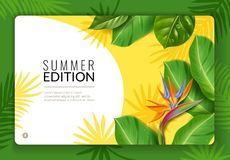 Tropical leaves landing page. Landing web template page with tropical leaves and flower on the summer edition vector illustration