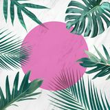 Tropical leaves on marble background with pink copy space.summer concepts. Ideas royalty free stock image