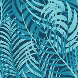 Tropical Leaves pattern Stock Photography