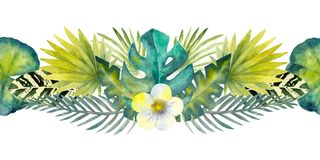 Tropical leaves . Repetition of summer horizontal border. Floral watercolor. Watercolor compositions for the design of. Greeting cards or invitations vector illustration