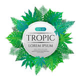 Tropical leaves round frame with place for text isolated on white background. Vector illustration in hand drawn cartoon style. Can be used for design your Royalty Free Stock Photo