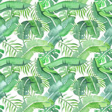 Tropical leaves saemless pattern vector illustration