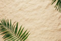 Tropical leaves on the sand, top view. royalty free stock image
