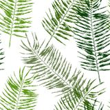 Tropical leaves seamless Stock Photos