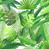 Tropical leaves seamless pattern Royalty Free Stock Images