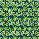 Tropical leaves seamless pattern. Exotic flowers and jungle print Stock Images