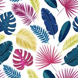 Tropical leaves seamless pattern. Vector tropical leaves seamless pattern. Jungle exotic banana leaf, philodendron, areca palm, royal fern and plumeria Stock Images
