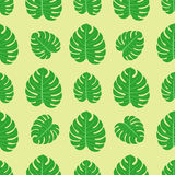 Tropical leaves summer jungle green palm leaf exotic seamless pattern hawaii monstera botanical flora vector Royalty Free Stock Photos
