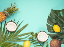 Tropical leaves top view. Summer vacation, travel, tourism concept flat lay. Tropical leaves top view royalty free stock photo