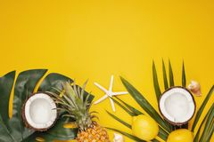 Tropical leaves top view. Summer vacation, travel, tourism concept flat lay. Tropical leaves top view stock image