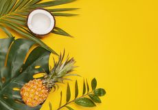 Tropical leaves top view. Summer vacation, travel, tourism concept flat lay. Tropical leaves top view royalty free stock images