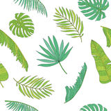 Tropical leaves various shapes seamless pattern background. Tropical palm, monstera, chamaedorea leaves seamless pattern background Royalty Free Stock Photos