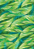 Tropical leaves Stock Photography