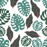 Tropical leaves. Vector seamless pattern Royalty Free Stock Image