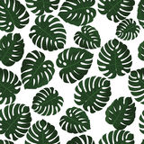 Tropical leaves. Vector. Seamless pattern in swatch. Monstera wallpaper. Exotic texture with greenery hawaiian leaf. Floral summer background. Jungle leaves Royalty Free Stock Photo
