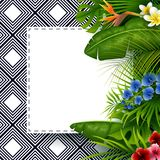 Tropical leaves with white frame paper for text background. Illustration of Tropical leaves with white frame paper for text background Stock Photos
