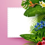 Tropical leaves with white frame paper for text on pink background. Illustration of Tropical leaves with white frame paper for text on pink background Stock Images