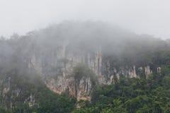 Tropical Limestone Cliffs with Fog Stock Photos