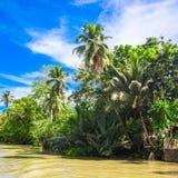 Tropical Loboc river, blue sky, Bohol Island, Stock Photo