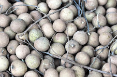 Tropical longan Royalty Free Stock Images