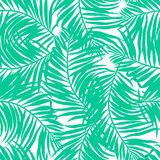 Tropical lush palms seamless pattern Stock Image