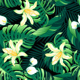 Tropical lush yellow flowers seamless pattern Stock Images