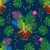 Tropical magic forest. Stock Photo