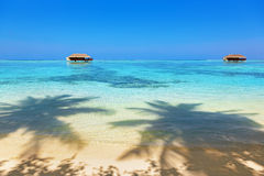 Tropical Maldives island Royalty Free Stock Images