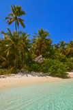 Tropical Maldives island Royalty Free Stock Photos