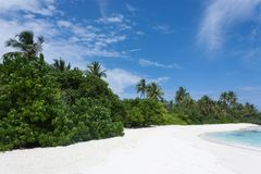 Tropical Maldives island with white sandy beach with palm trees and turquoise clear water and blue sky at sunny day.  Stock Photos