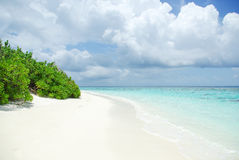 Tropical Maldivian island and beach in Indian ocean Royalty Free Stock Image