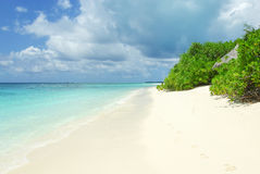 Tropical Maldivian island and beach in Indian ocean Stock Image