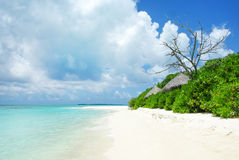 Tropical Maldivian island in Indian ocean Royalty Free Stock Photos