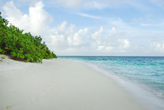 Tropical Maldivian island in Indian ocean Stock Image
