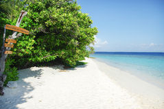 Tropical Maldivian island in Indian ocean Royalty Free Stock Images